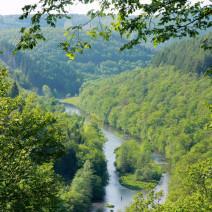 Ontdek de natuur Ardennen